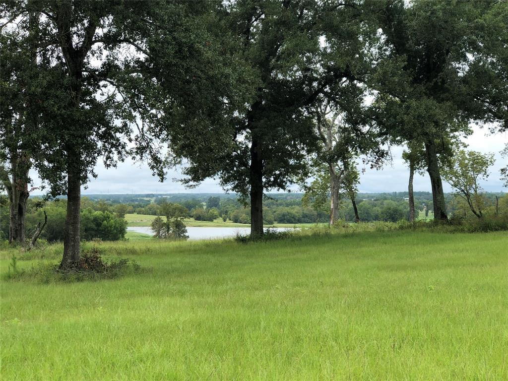 7392 Pecan Hills, Plantersville, TX 77363 - Plantersville, TX real estate listing