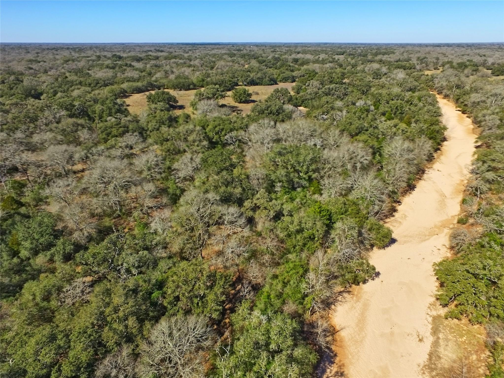 TBD County Road 158 Property Photo - Hallettsville, TX real estate listing