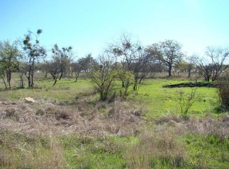 000 Amy Drive Property Photo - brownwood, TX real estate listing