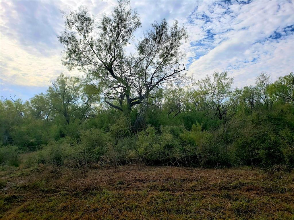 5210 CR 345 Lot 5933 Property Photo - Charlotte, TX real estate listing