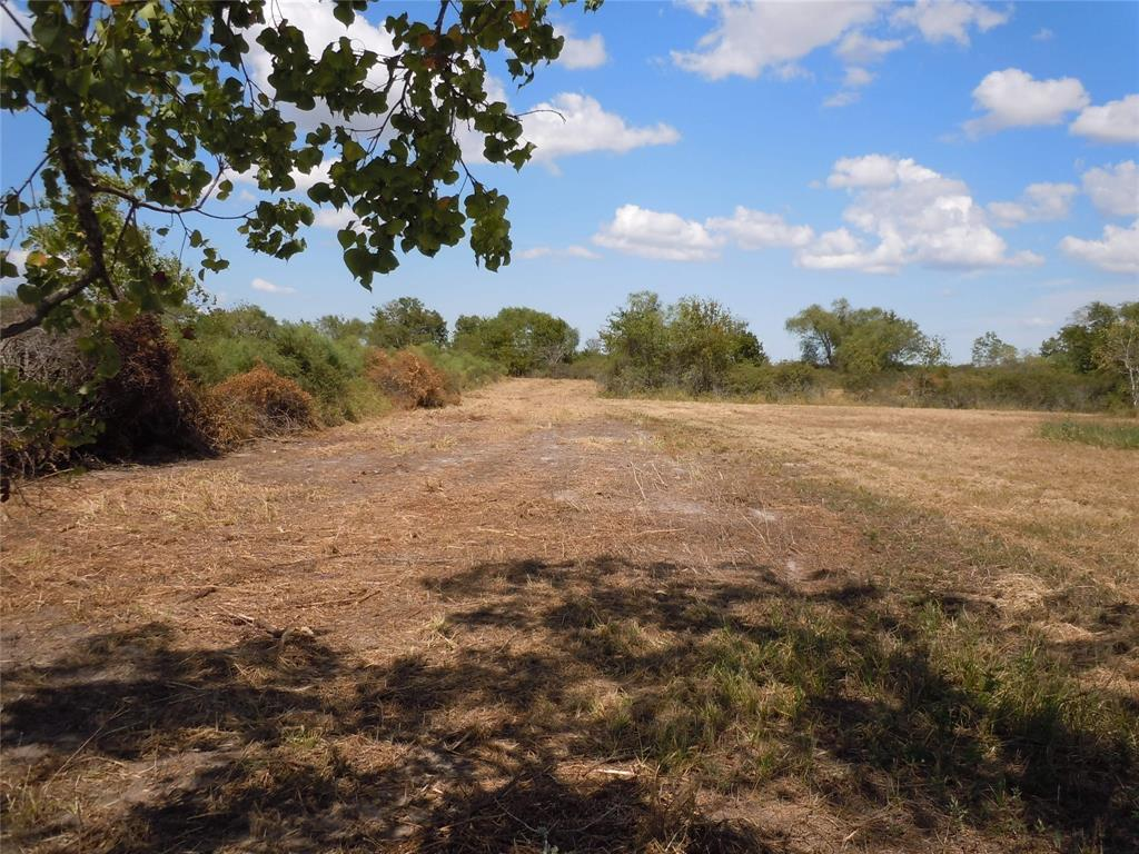 0000 County Road 248, Lissie, TX 77454 - Lissie, TX real estate listing