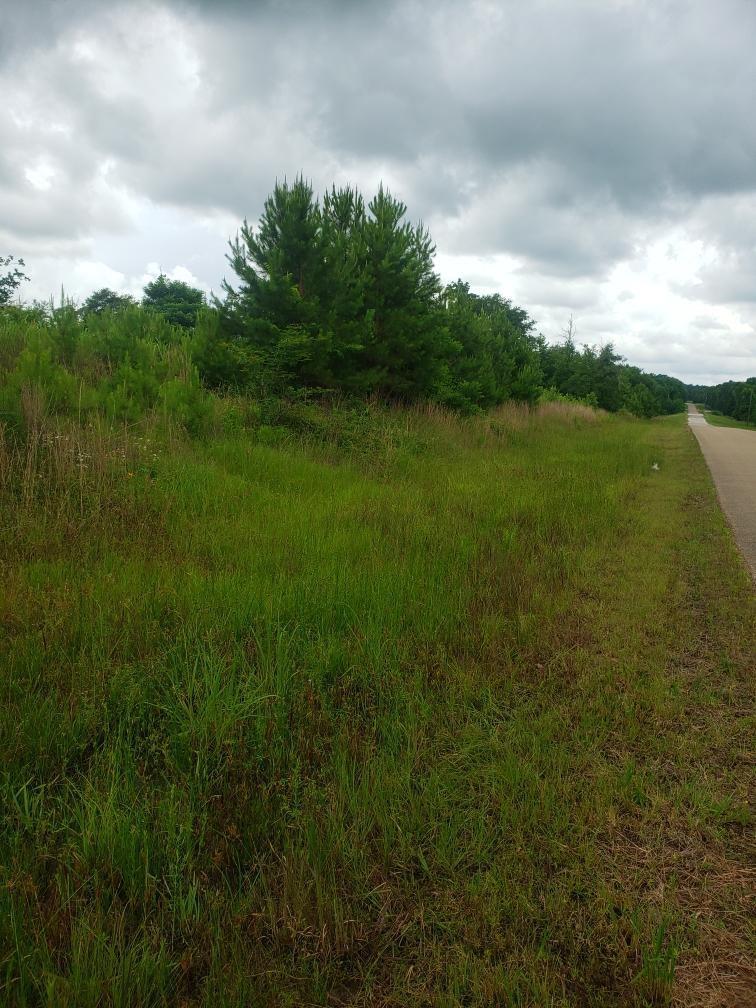 5280 Grantie Ridge Extension N Property Photo