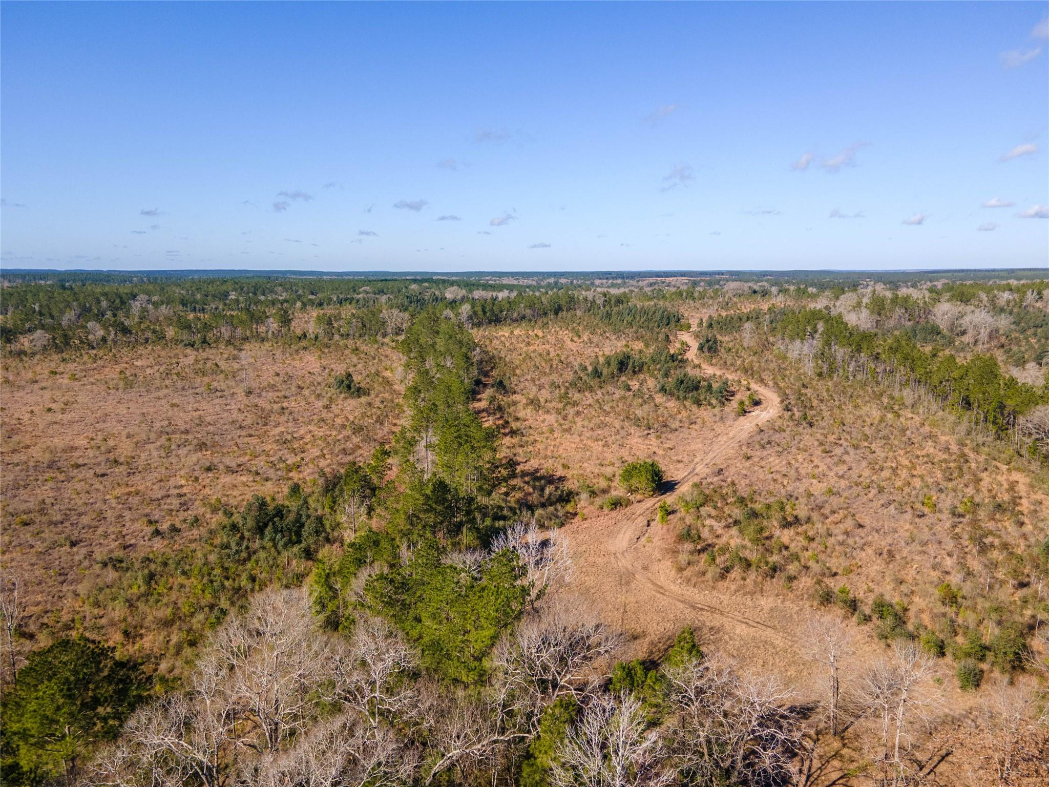 2670 County Rd Property Photo - Chester, TX real estate listing