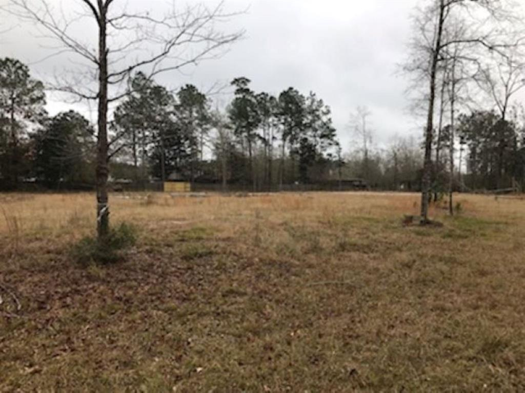395 Magnolia Trace, Silsbee, TX 77656 - Silsbee, TX real estate listing