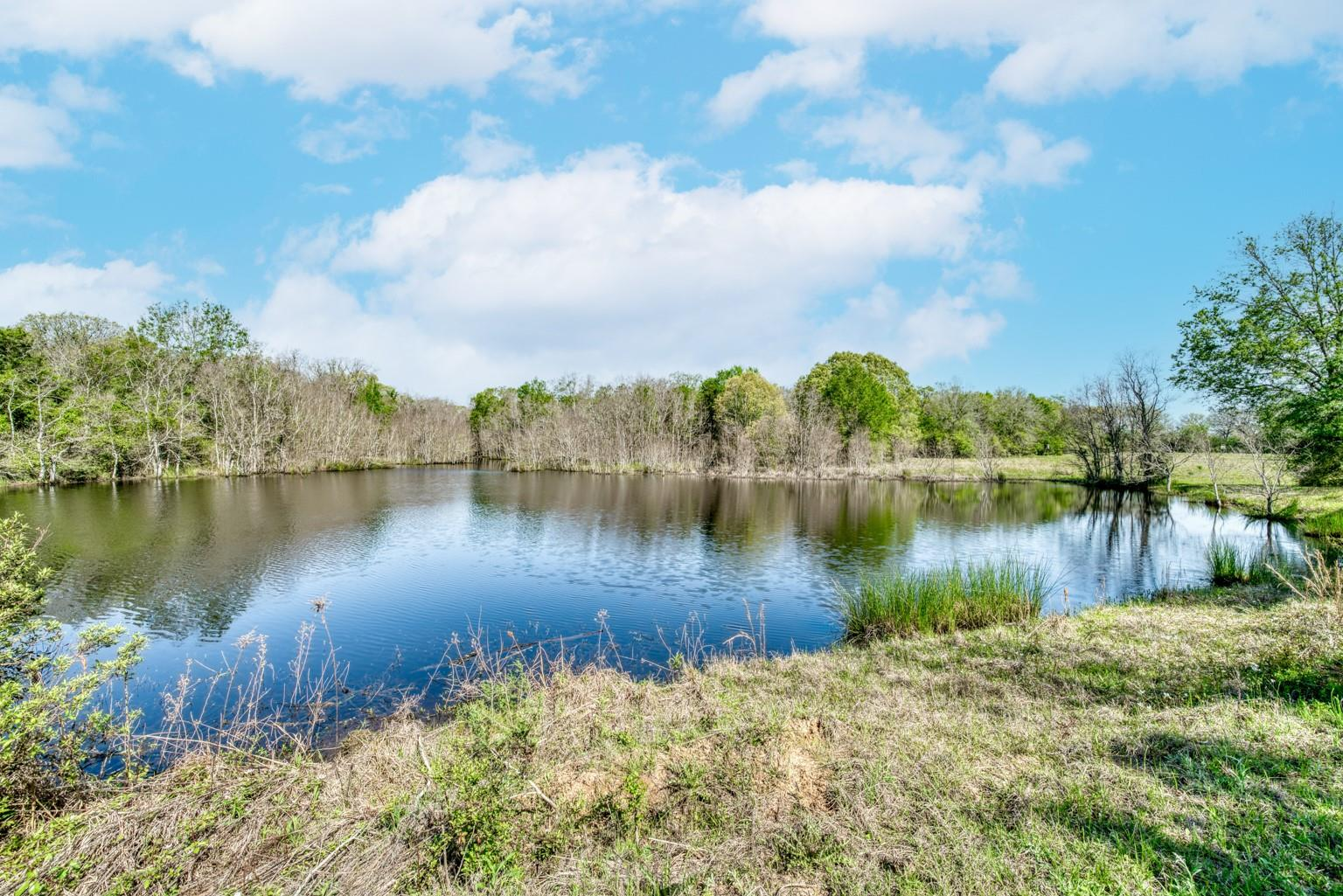 745 Fm 2967 Property Photo - Crockett, TX real estate listing