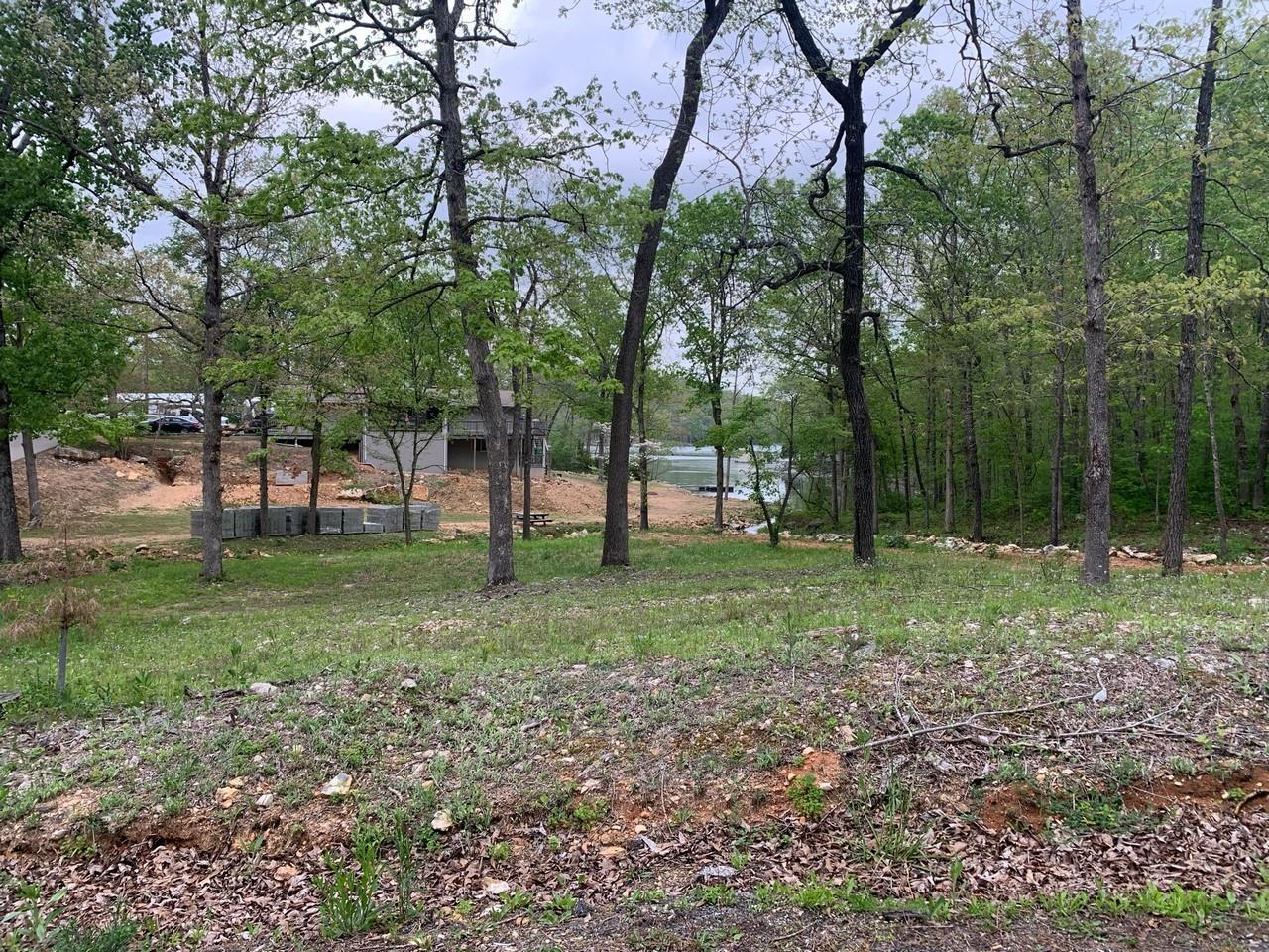 100 Summit Ridge Drive Property Photo - Other, AR real estate listing