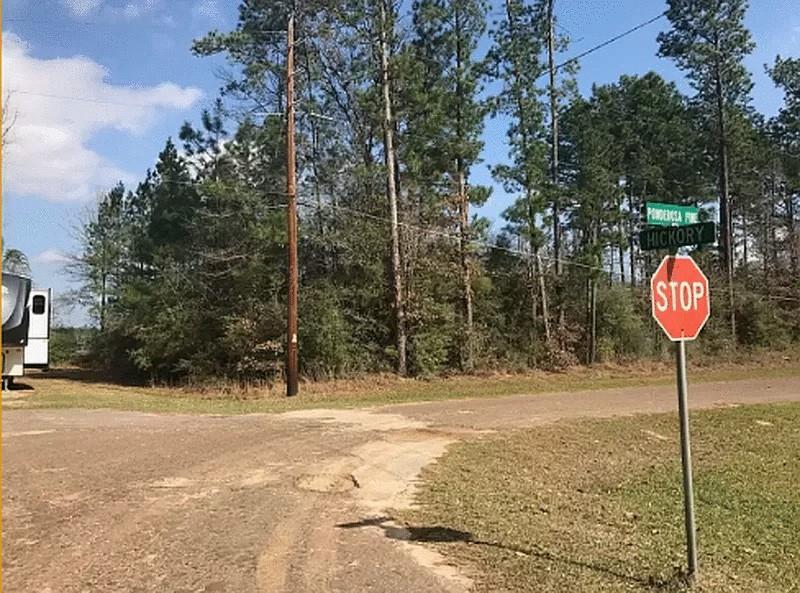 214 ponderosa pines Property Photo - Village Mills, TX real estate listing