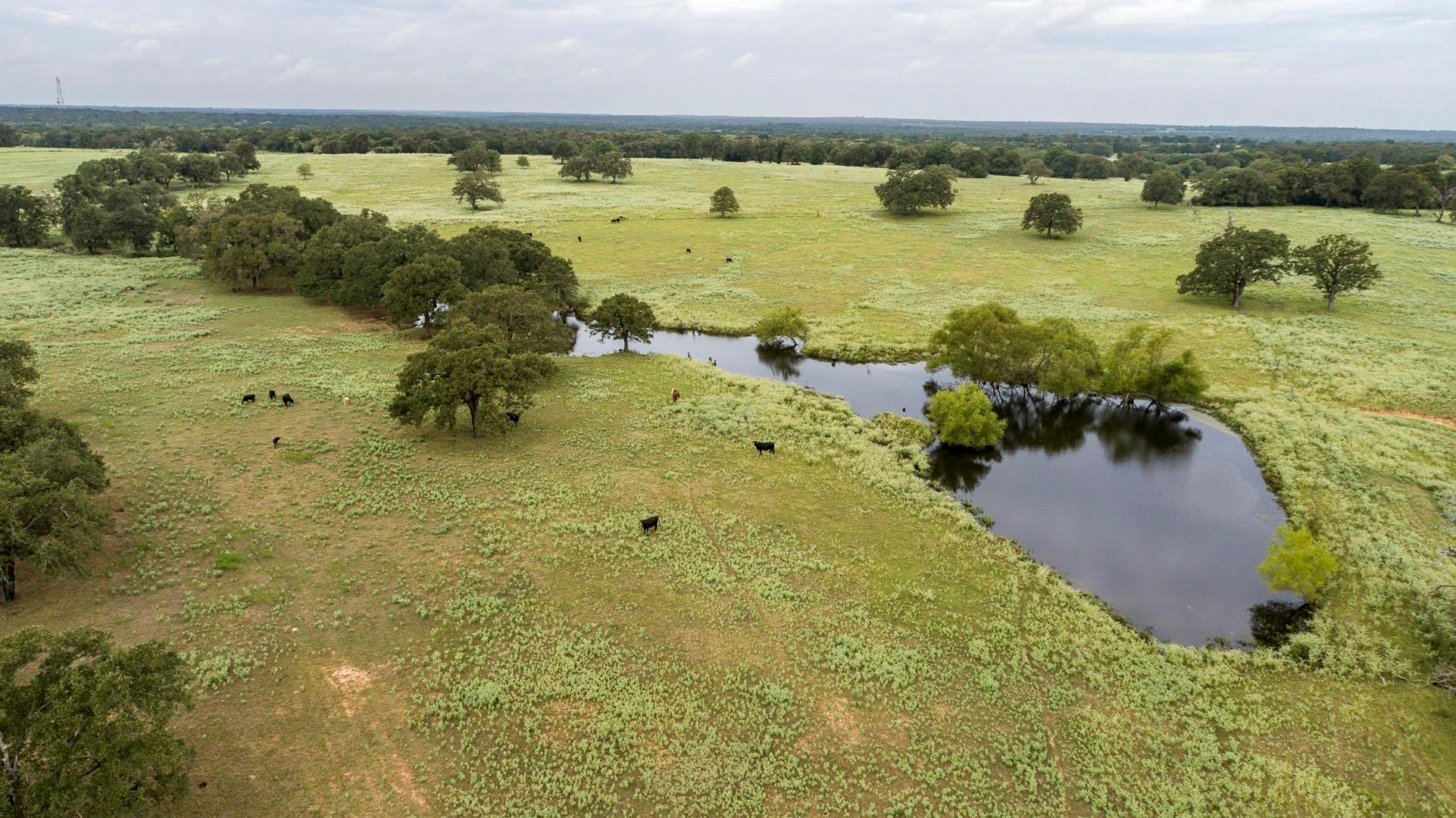 1085 County Road 380 Property Photo - Milano, TX real estate listing