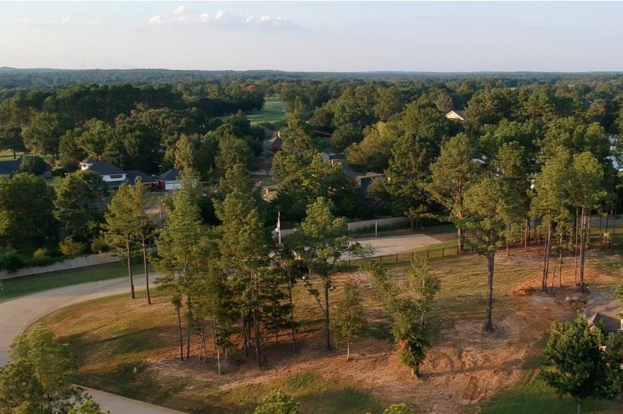 22221 Mallards Cove Ct Property Photo - Bullard, TX real estate listing