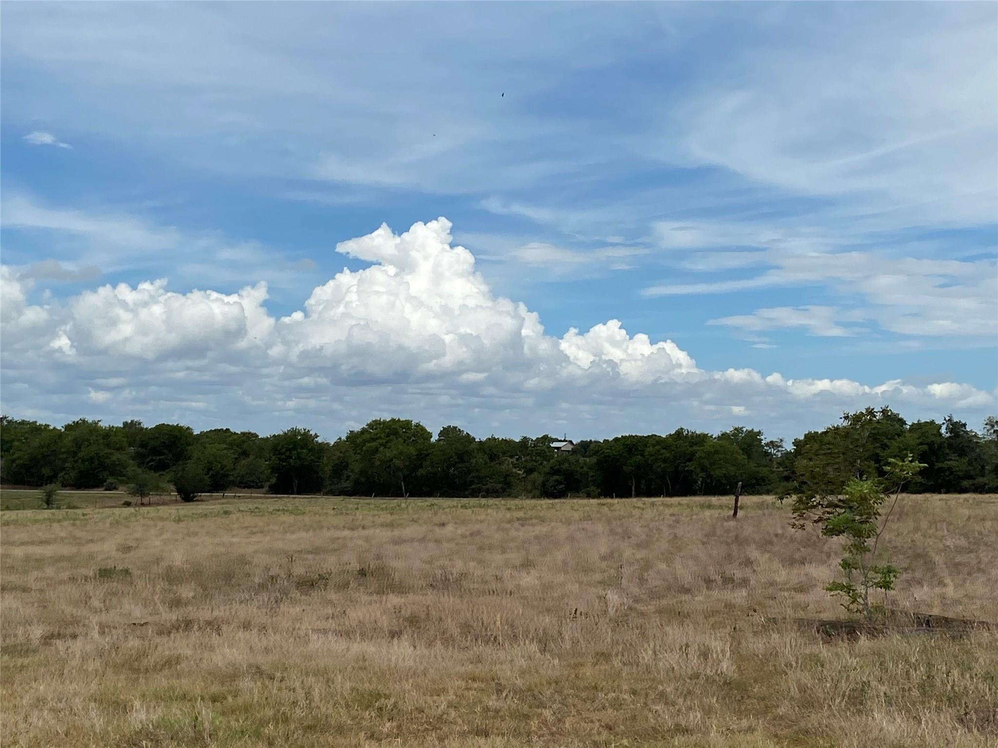 TBD W State Highway 159 Property Photo - Fayetteville, TX real estate listing