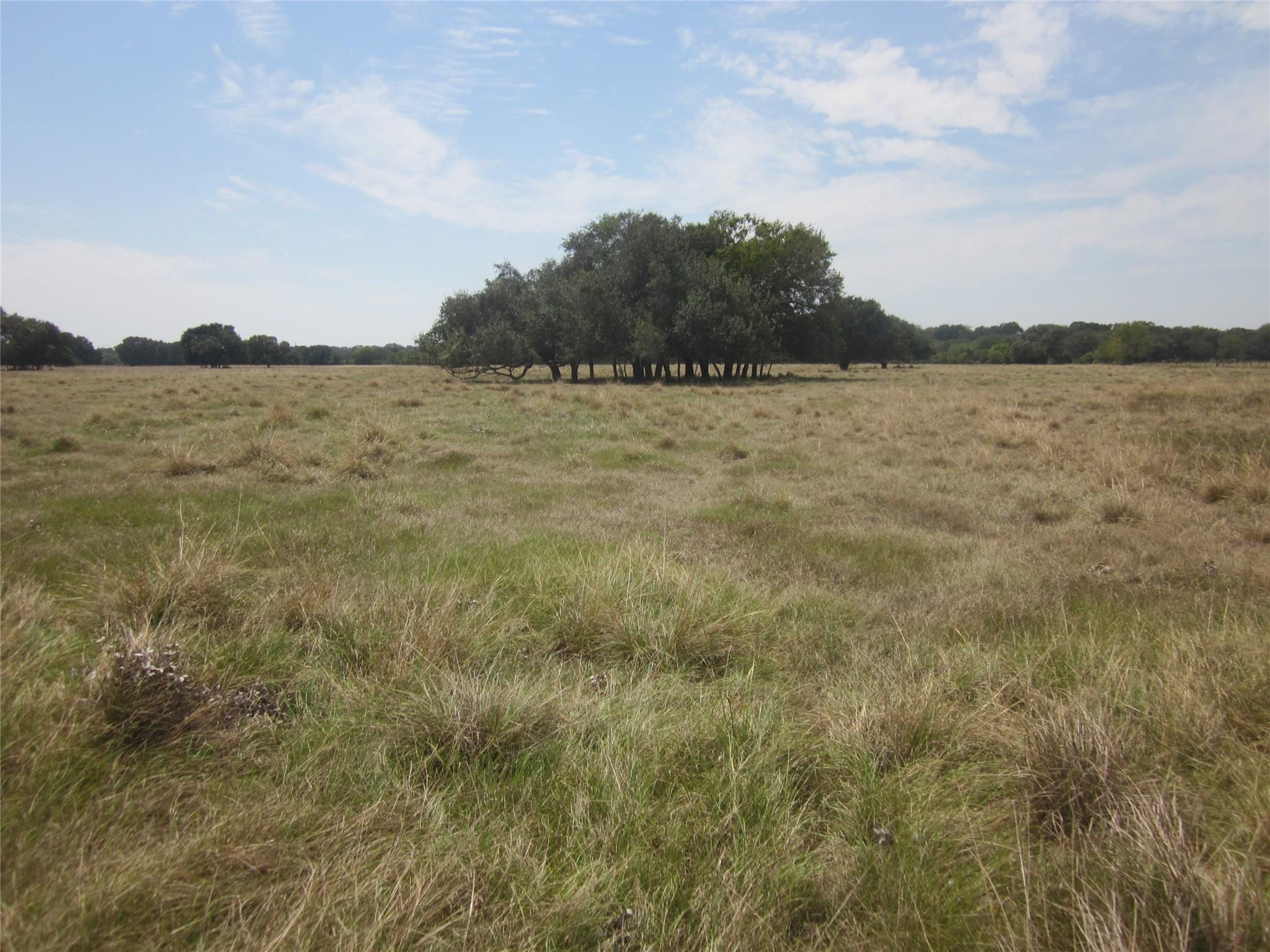 3671 W FM 1093 Road Property Photo - Wallis, TX real estate listing