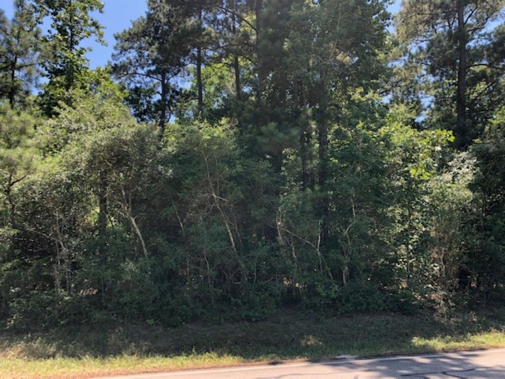 0 Rose Road Property Photo - Willis, TX real estate listing