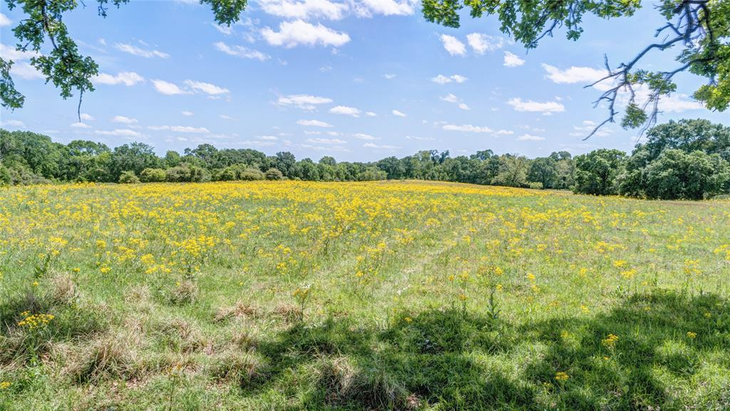 0000 Hardy Weedon Road Property Photo - College Station, TX real estate listing