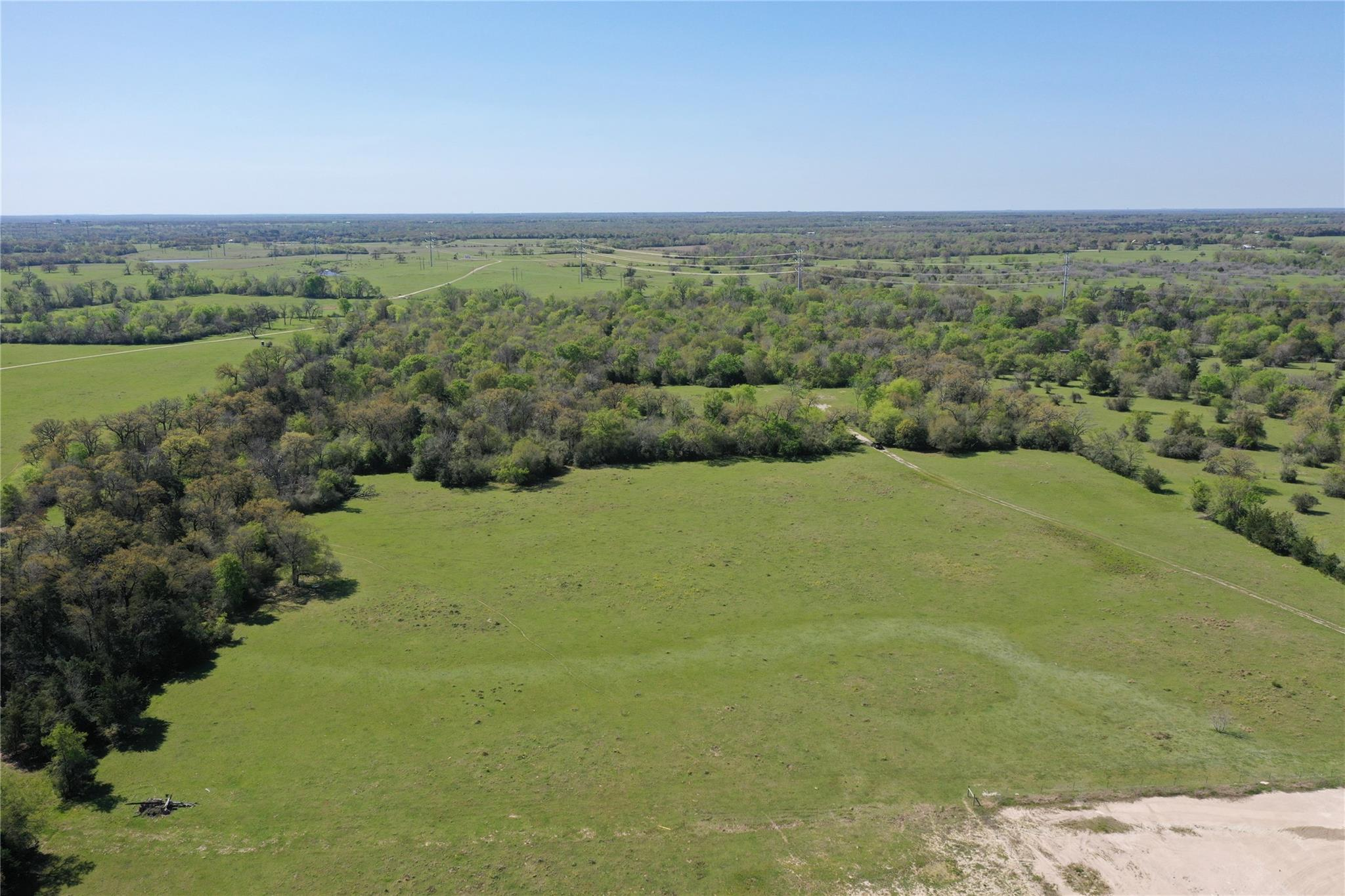 73 Acres Highway 21 West Property Photo - Madisonville, TX real estate listing