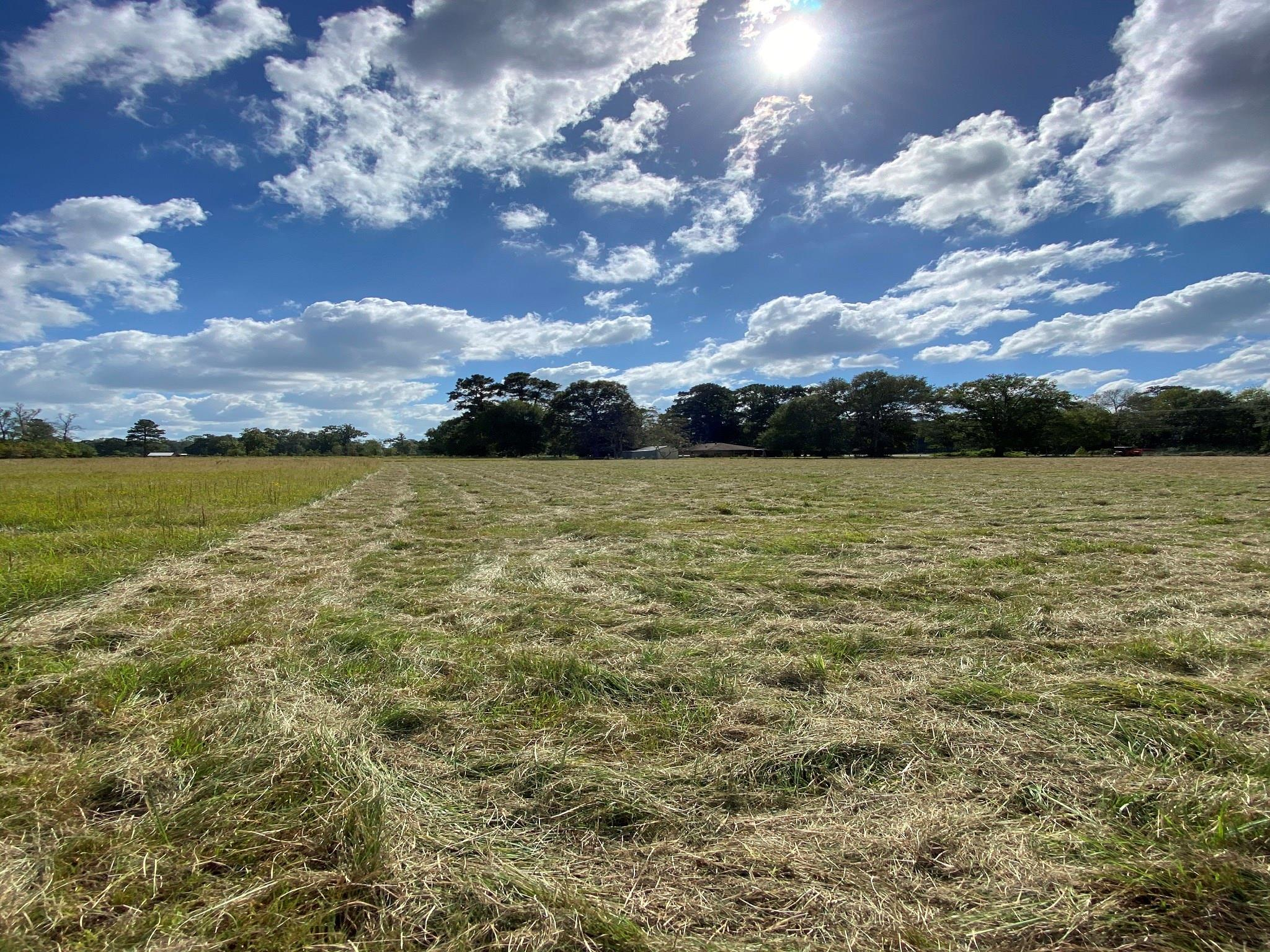 Tract 2 FM 2518 Property Photo - Cleveland, TX real estate listing
