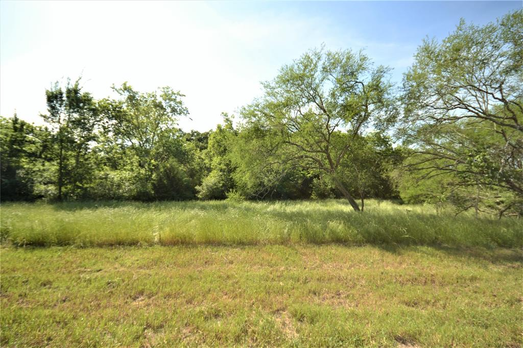 13083 Lot 21 E Old San Antonio Road, Hearne, TX 77859 - Hearne, TX real estate listing