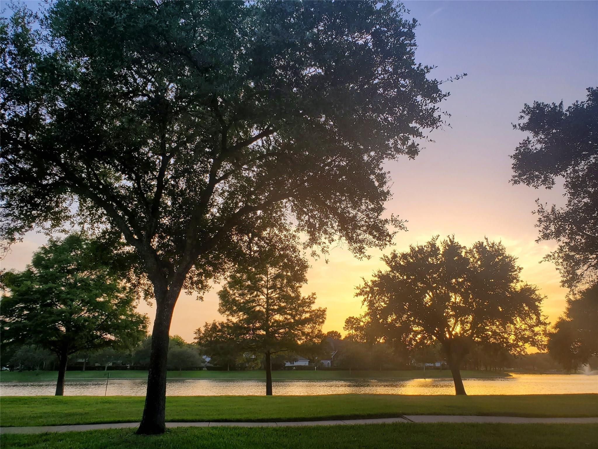 5010 Bellmead Drive Property Photo - Missouri City, TX real estate listing