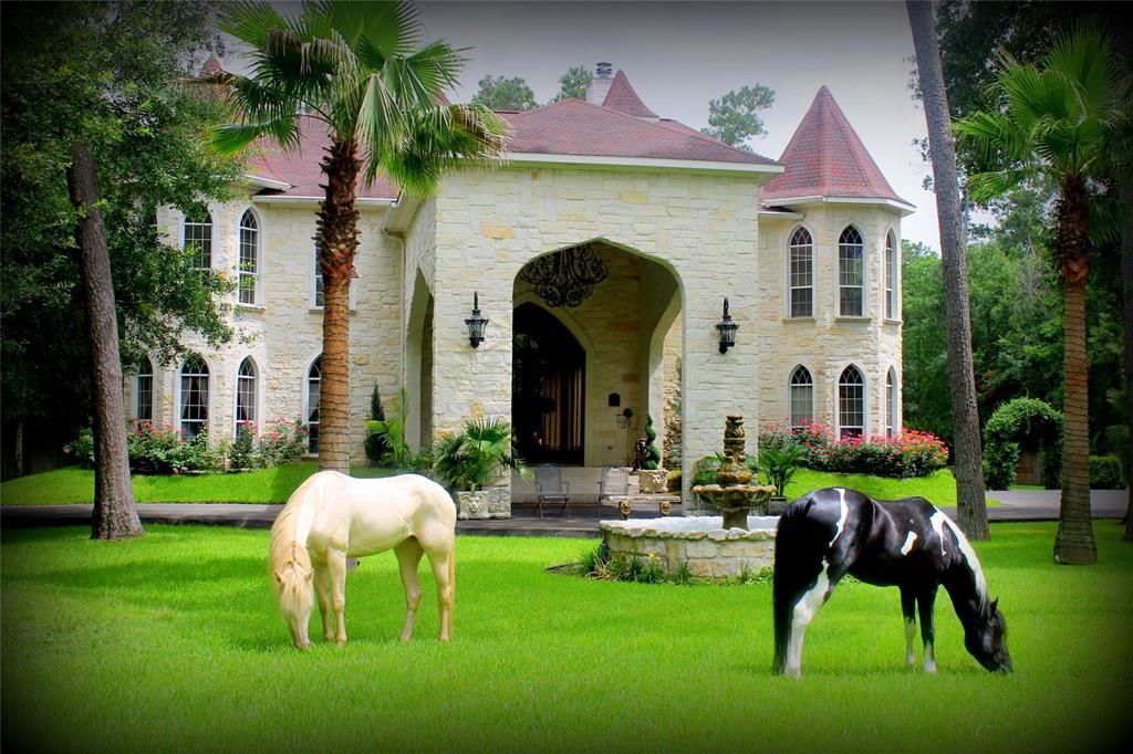 12503 Kluge Road, Cypress, TX 77429 - Cypress, TX real estate listing