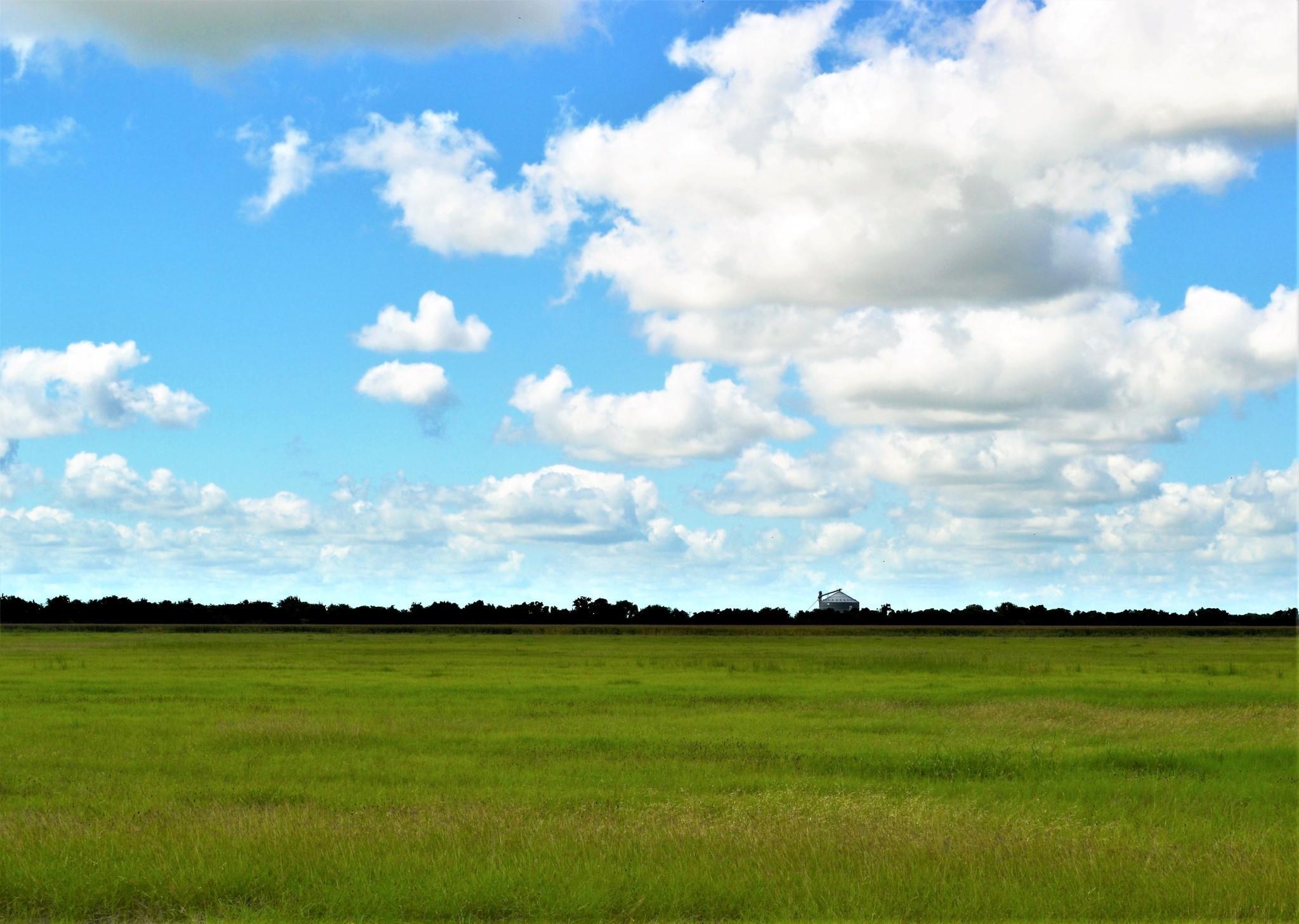 000 Fm 961 Property Photo