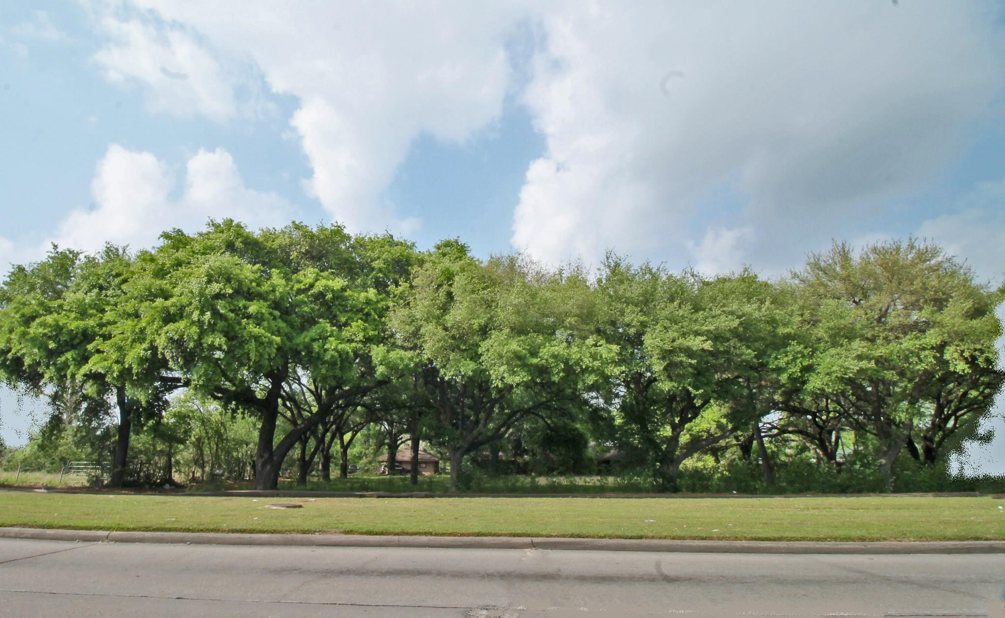 12102 Bissonnet St Street S Property Photo - Houston, TX real estate listing