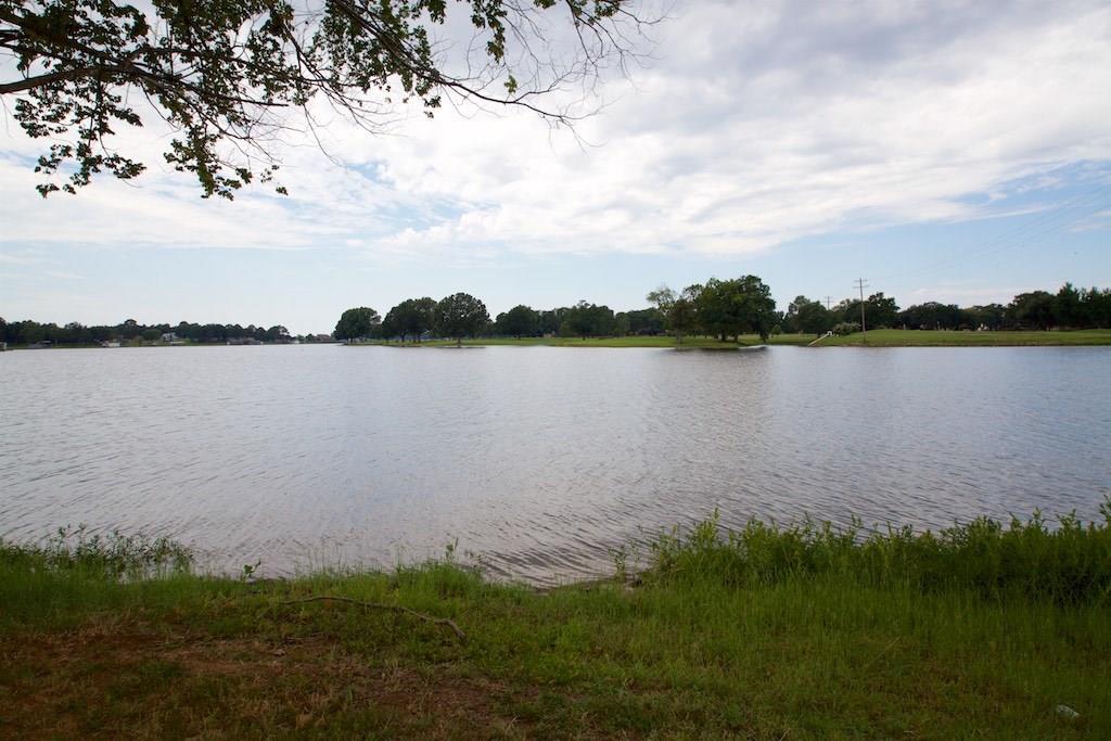 22204 Mallards Cove Ct Property Photo - Bullard, TX real estate listing