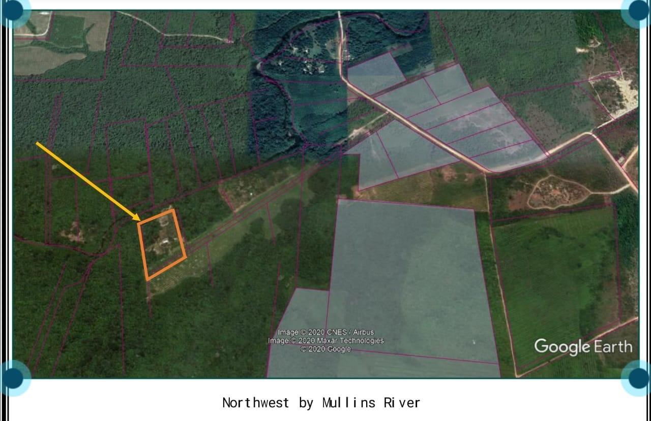 22 Mullins River Farm Ranch Stann Creek Belize Property Photo