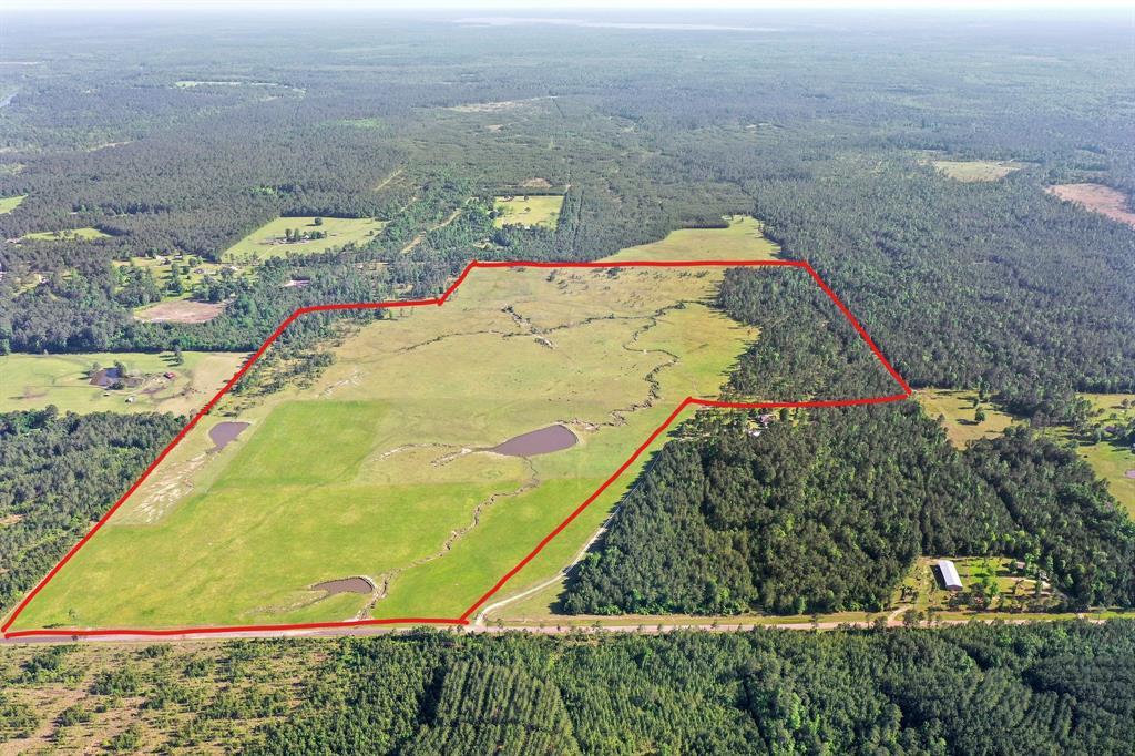 000 County Road 034 Property Photo - Jasper, TX real estate listing