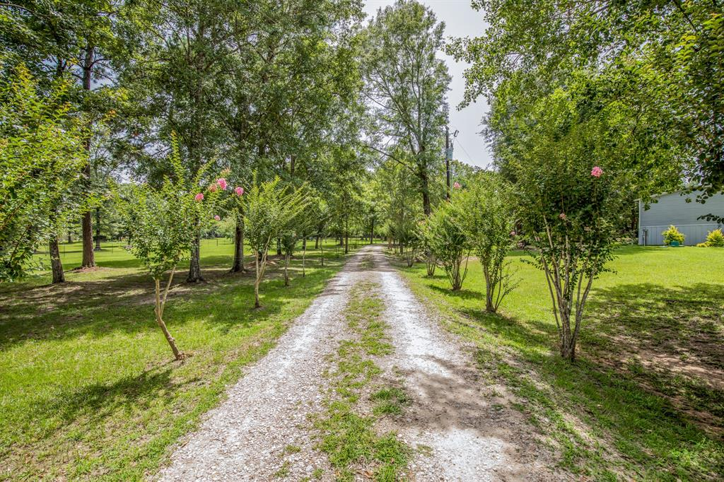 1400 Jenkins Road Property Photo - Oakhurst, TX real estate listing
