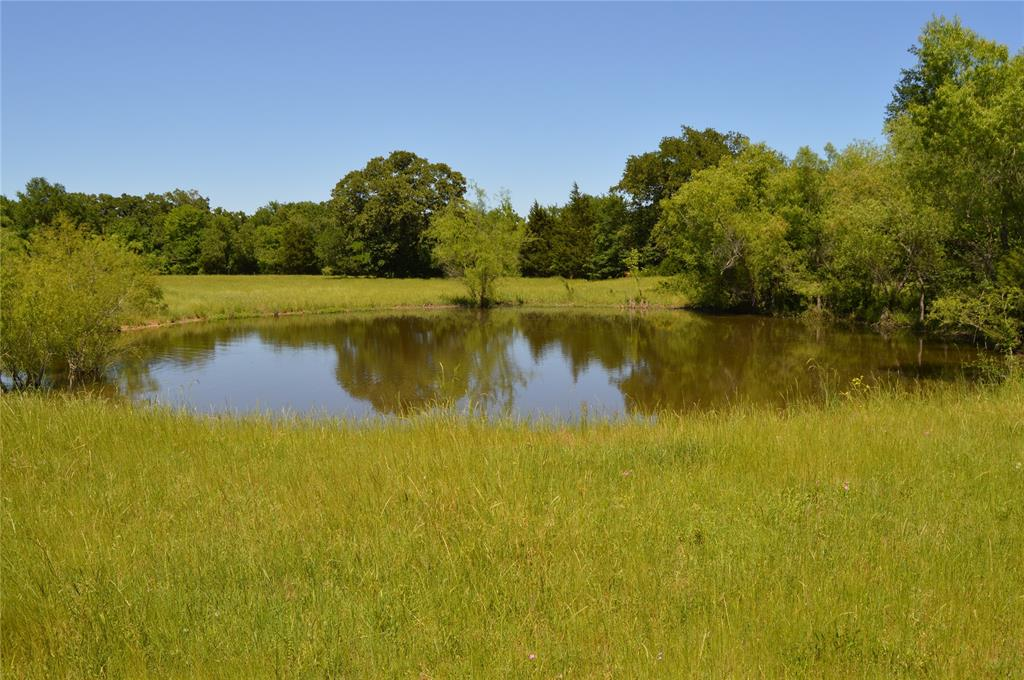TBD Fm 80 Property Photo - Mexia, TX real estate listing