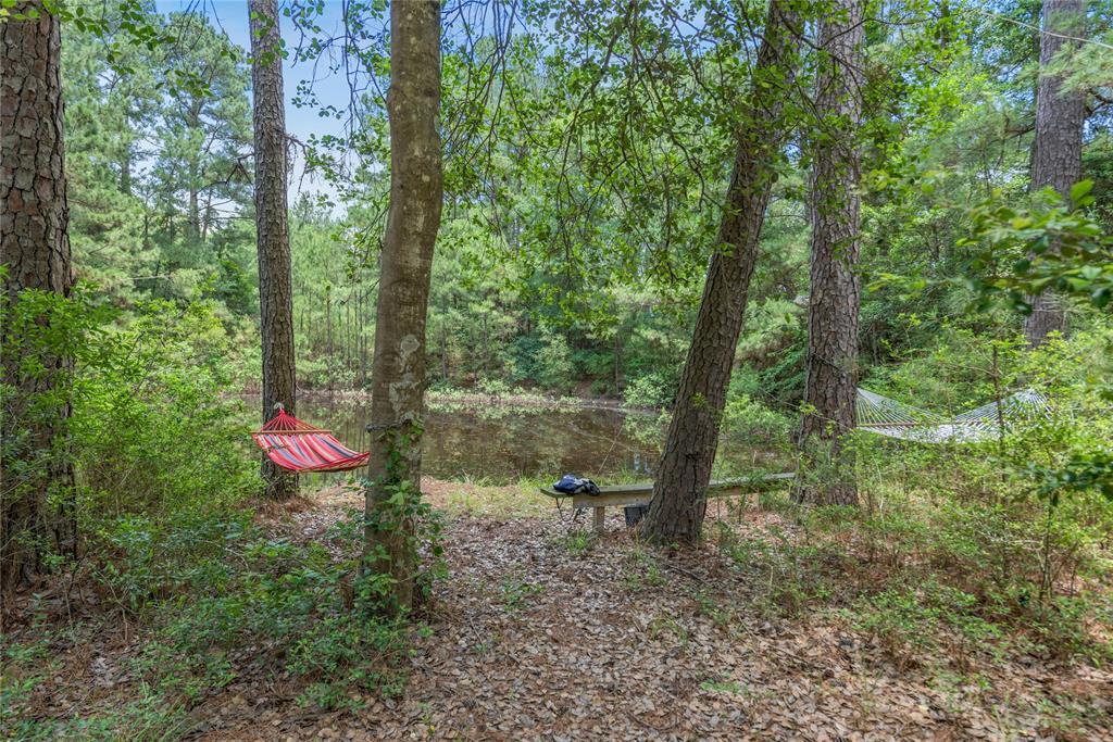 4110 County Road 178, Bedias, TX 77831 - Bedias, TX real estate listing