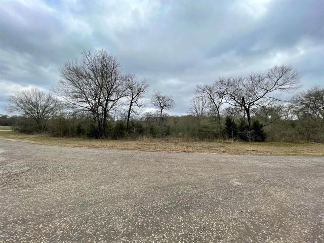 TBD Fcr 1201 Property Photo - Fairfield, TX real estate listing