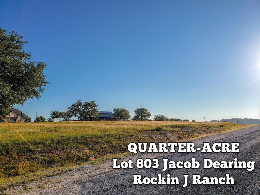Lot 803 Jacob Dearing Property Photo - Blanco, TX real estate listing