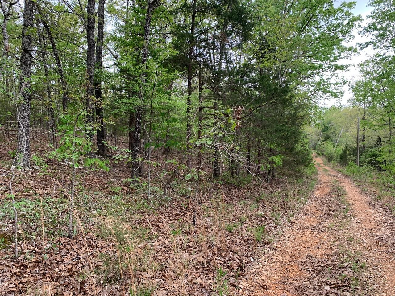 300 Old CCC Road Property Photo - Other, AR real estate listing