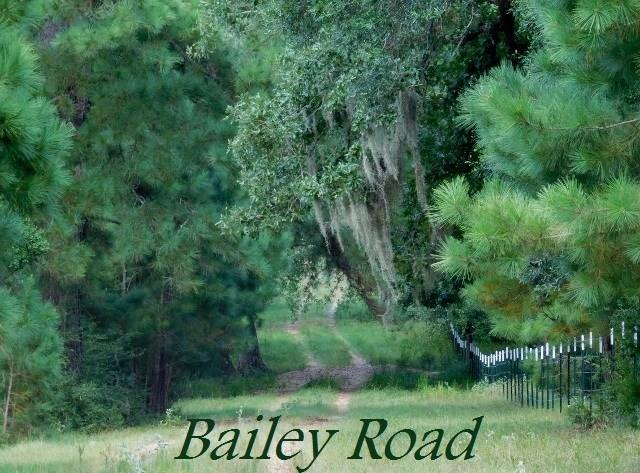 0 Bailey Road Road Property Photo - Alleyton, TX real estate listing