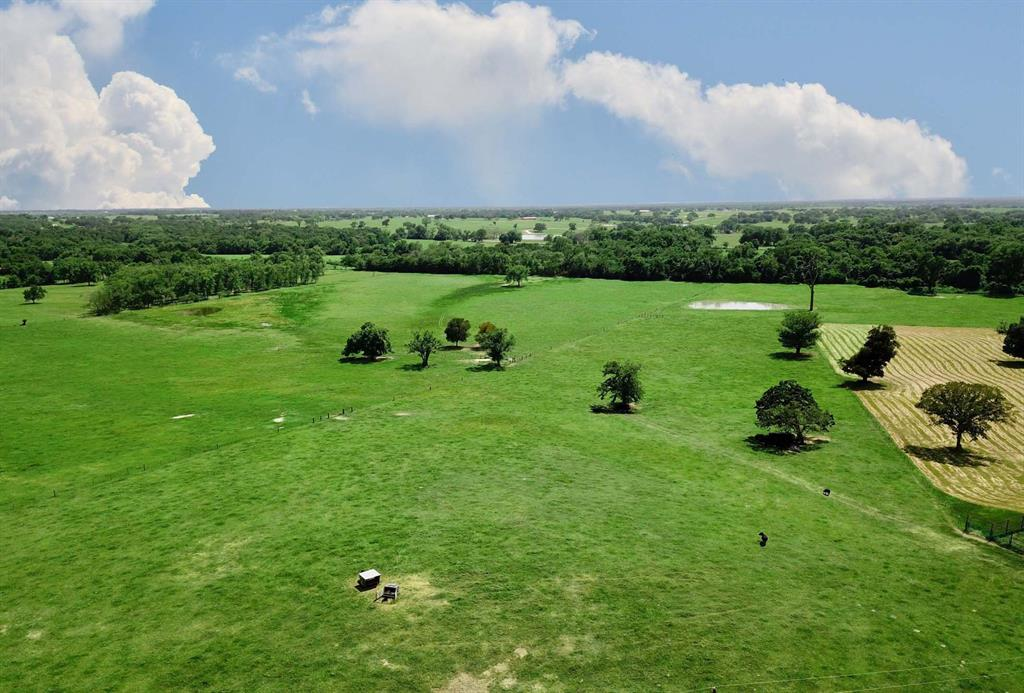 0017 County Road 185 Property Photo - Anderson, TX real estate listing