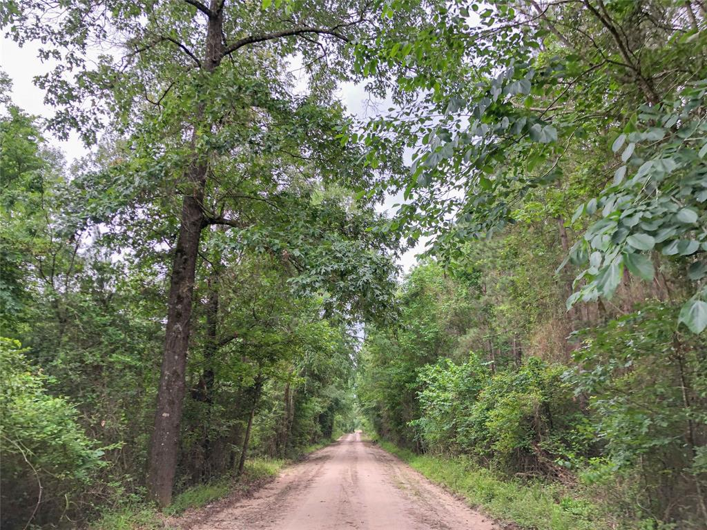 00000 CR 4545, Kennard, TX 75847 - Kennard, TX real estate listing