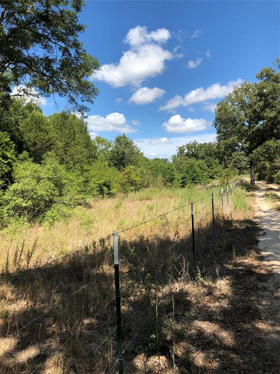 40 AC County Road 349, Jewett, TX 75846 - Jewett, TX real estate listing