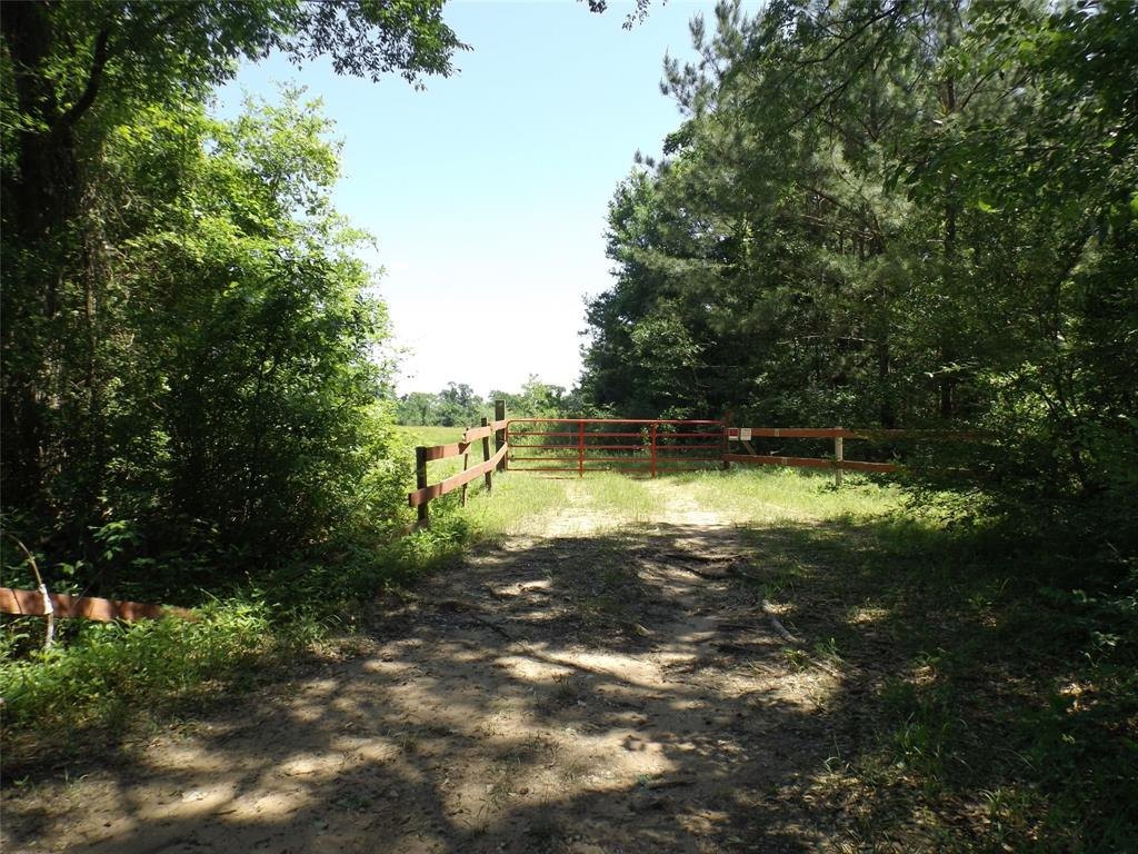 12689 County Road 201 Property Photo - Plantersville, TX real estate listing