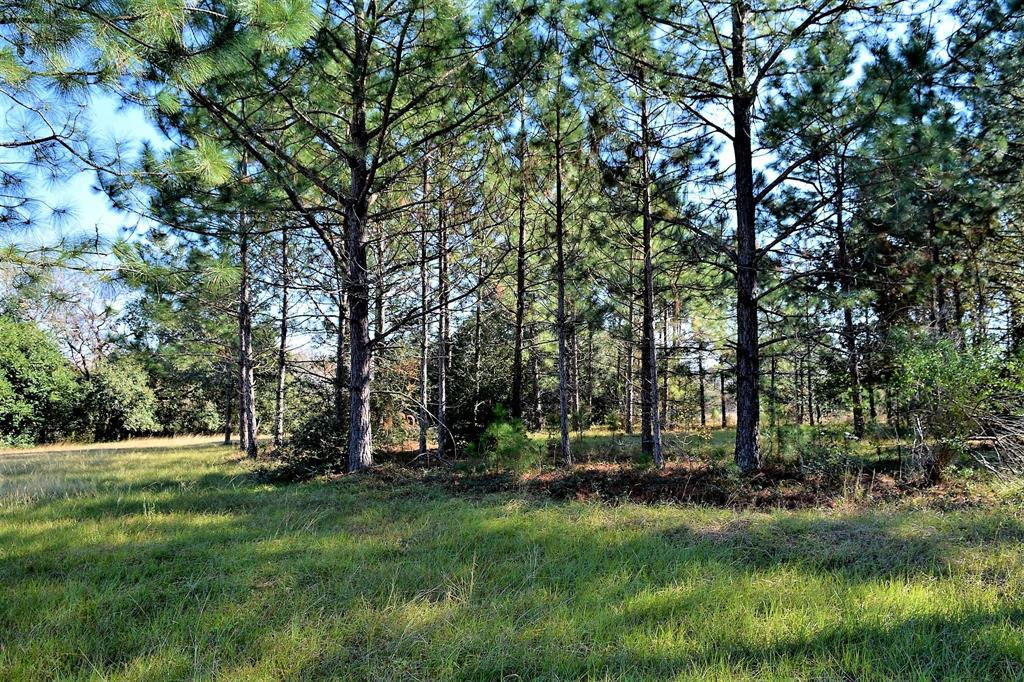 4 Elm, Hungerford, TX 77488 - Hungerford, TX real estate listing