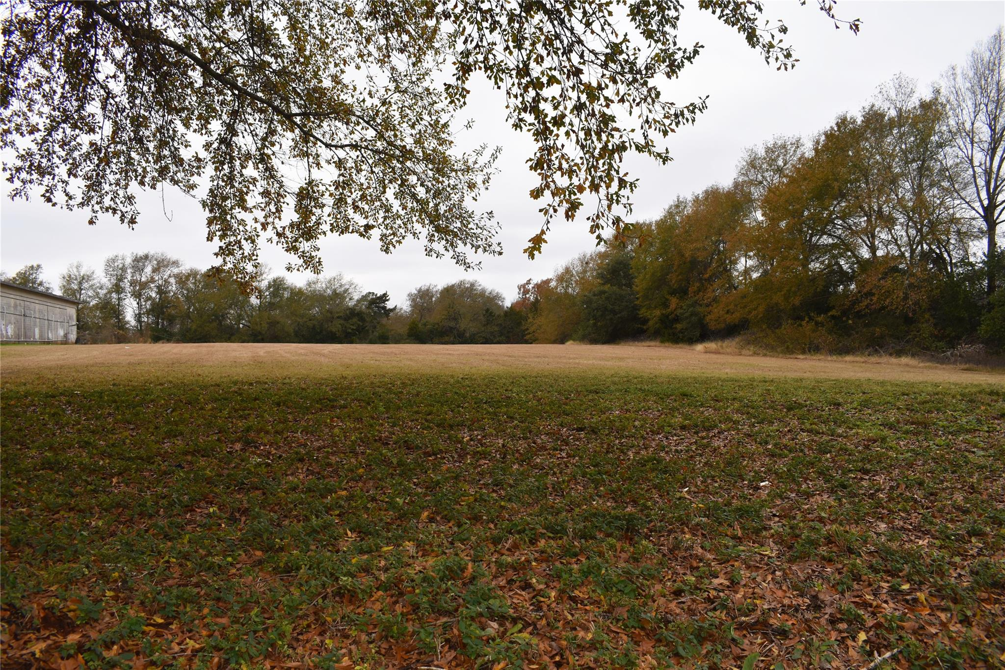 00 NW Palestine Avenue E Property Photo - Palestine, TX real estate listing