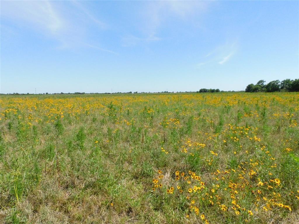 3013 FM Property Photo - Eagle Lake, TX real estate listing