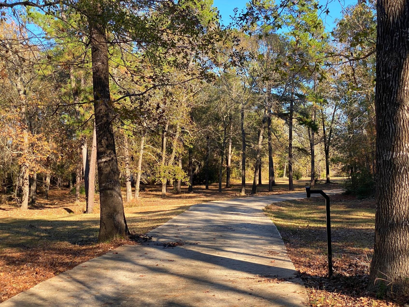 23622 Sharp Road Property Photo - Montgomery, TX real estate listing