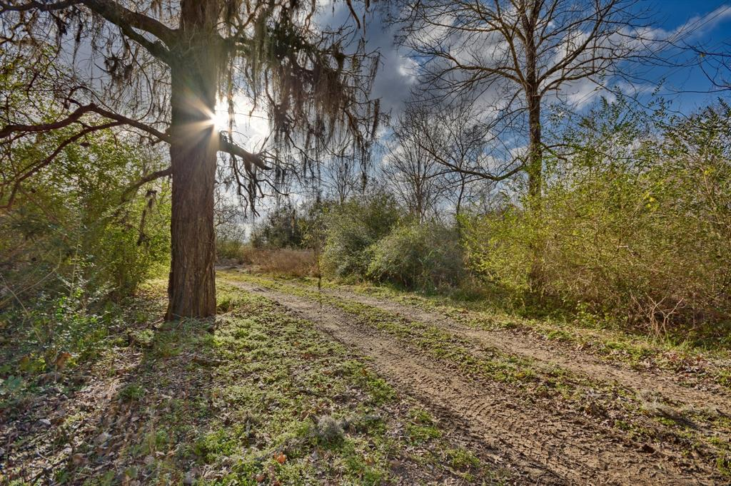 3183 Mill Creek Road, Bellville, TX 77418 - Bellville, TX real estate listing
