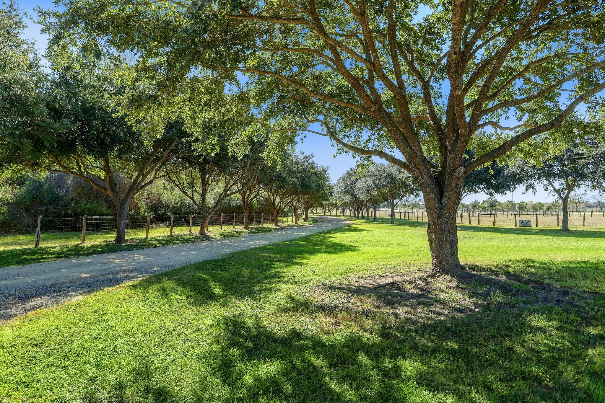 19158 Fm 359 Property Photo - Waller, TX real estate listing