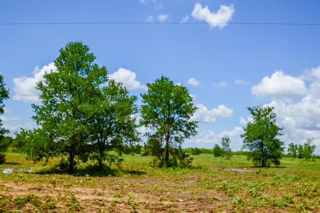 007 County Road 451 Property Photo - Waelder, TX real estate listing