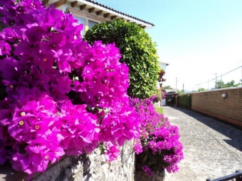 0 Rio Mayo Property Photo - Cuernavaca, real estate listing