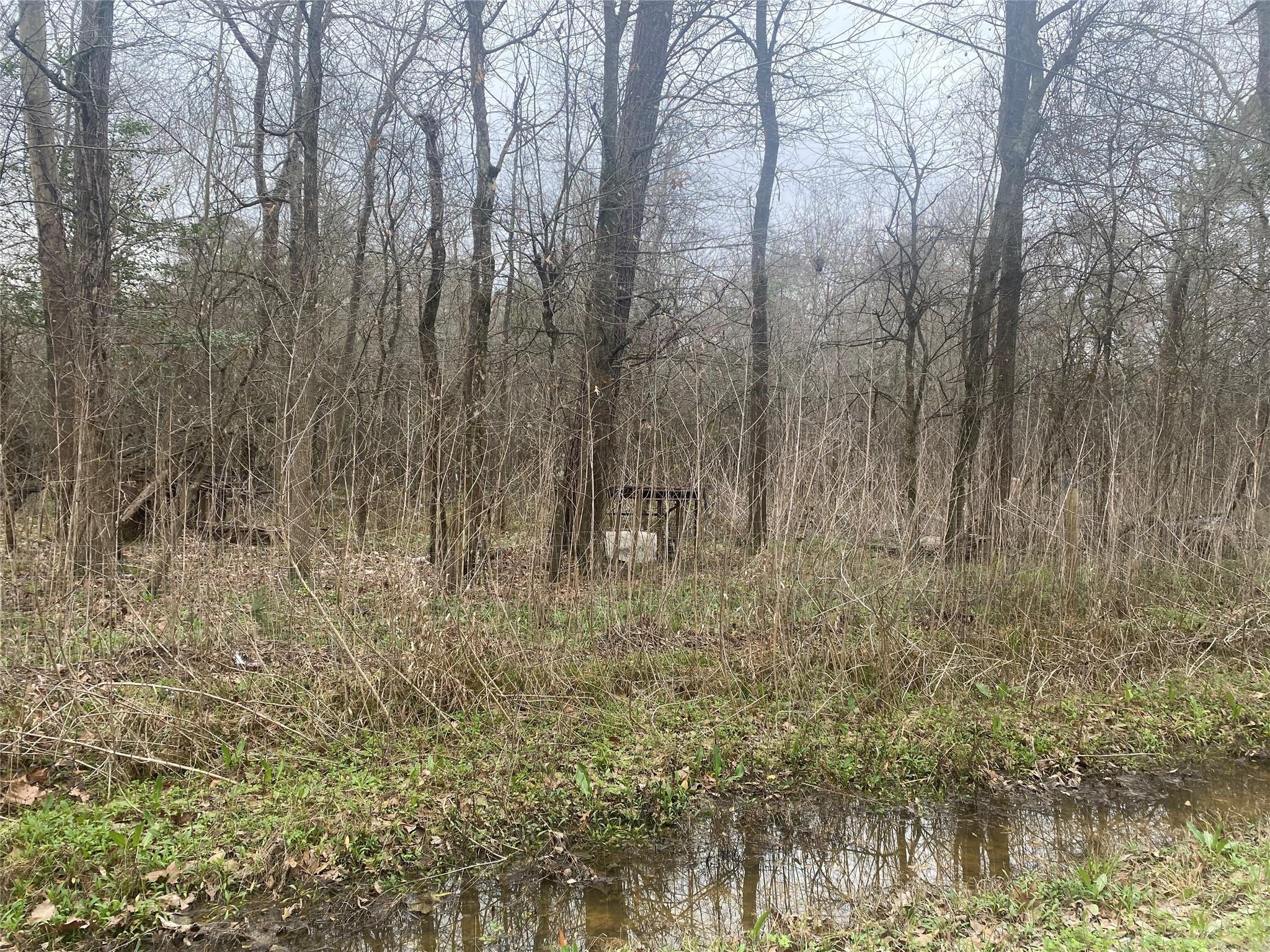 00 Gourd Creek Property Photo