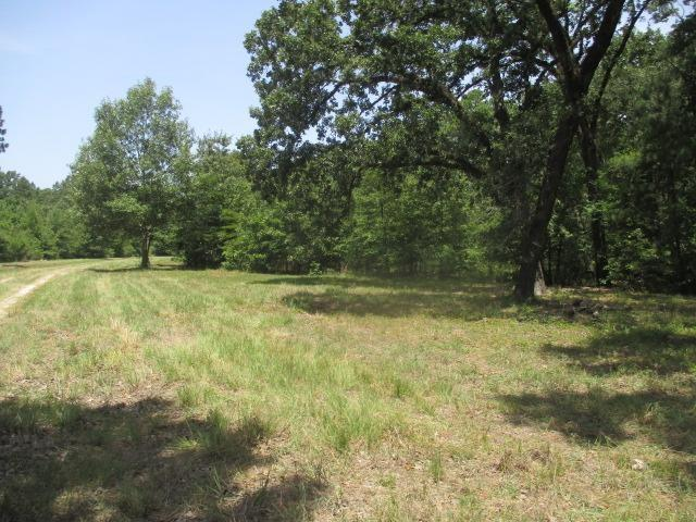 0000 FM 356 Property Photo - Onalaska, TX real estate listing