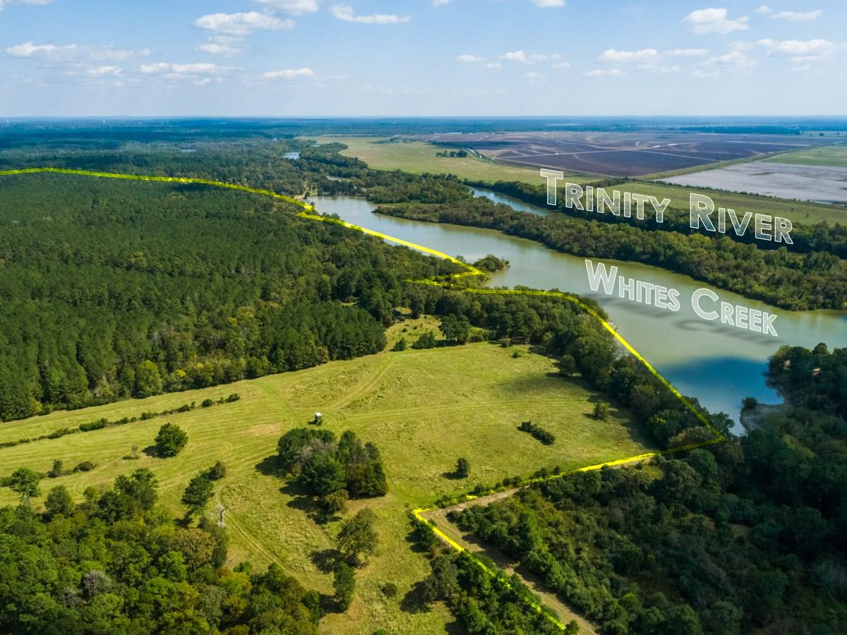 0 FM 230 Property Photo - Trinity, TX real estate listing