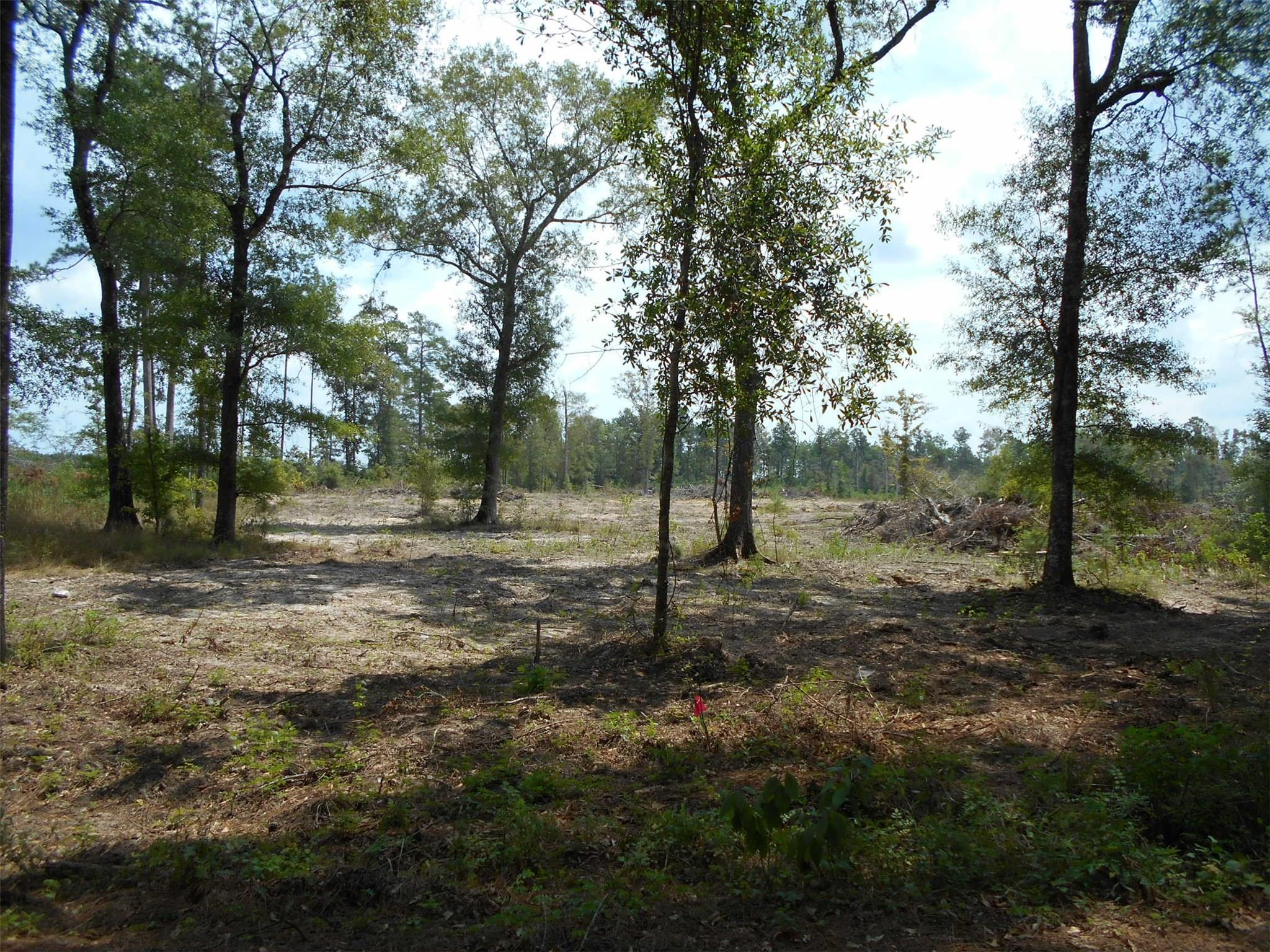 TBD Sumrall Road Property Photo - Votaw, TX real estate listing